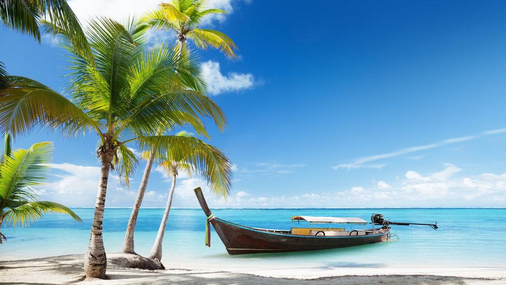 fonds-ecran-plage-palmier-15.jpg