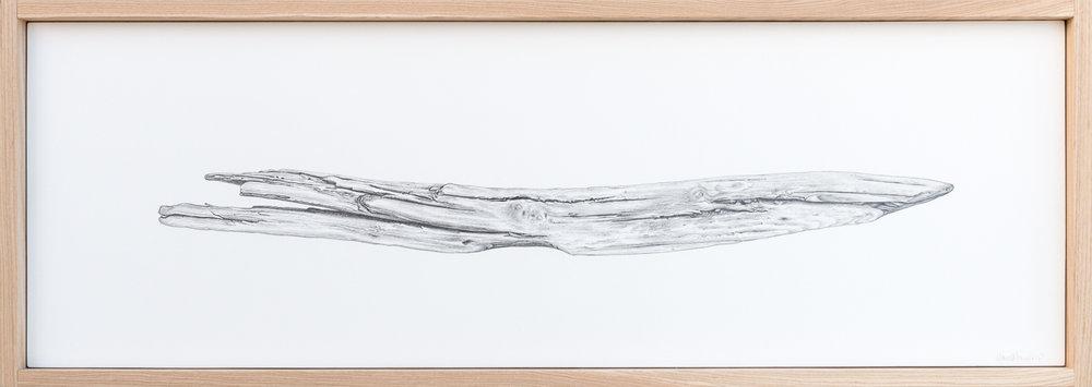 Driftwood No.2