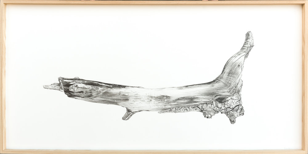 Driftwood No.1