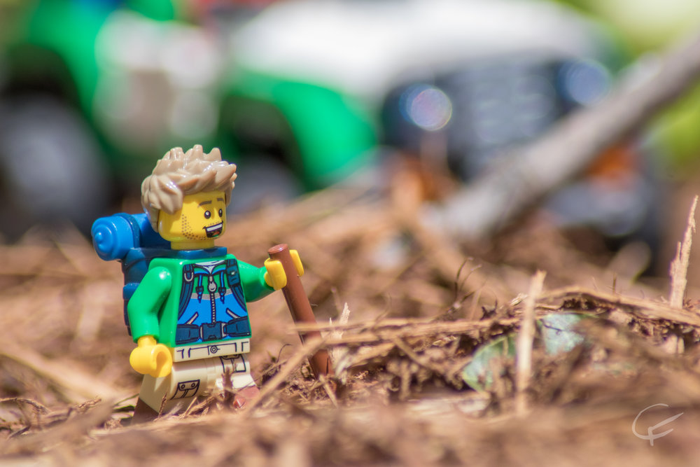 LEGO Park-4.jpg