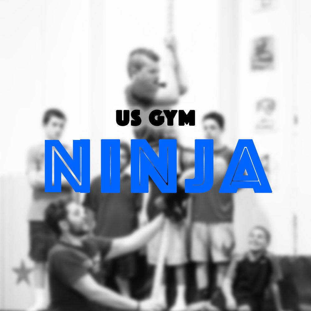 Ninja Graphics.jpg