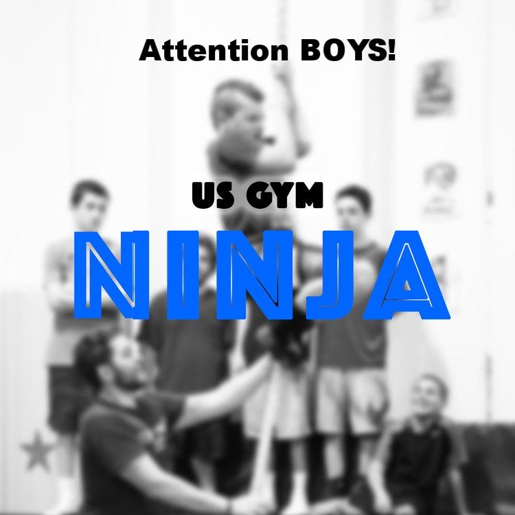 Ninja+Graphics.jpg
