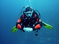 divers-668777__180.jpg