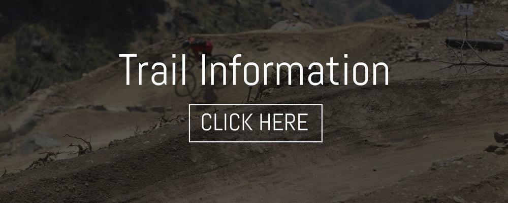 CAP-Website-Banner-Template.jpg
