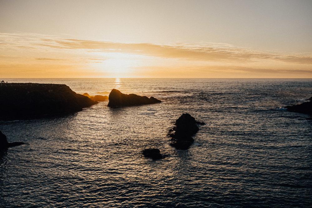 Mendocino-California-Coast-Adventure-Couple-Session-39.jpg