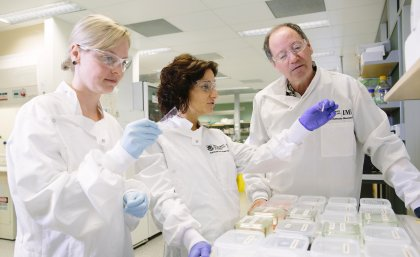 Dr Laura Genovesi, centre, with other researchers from the Institute for Molecular Bioscience.