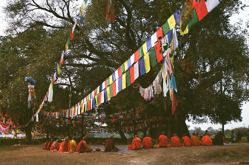 Lumbini, Nepal, Film