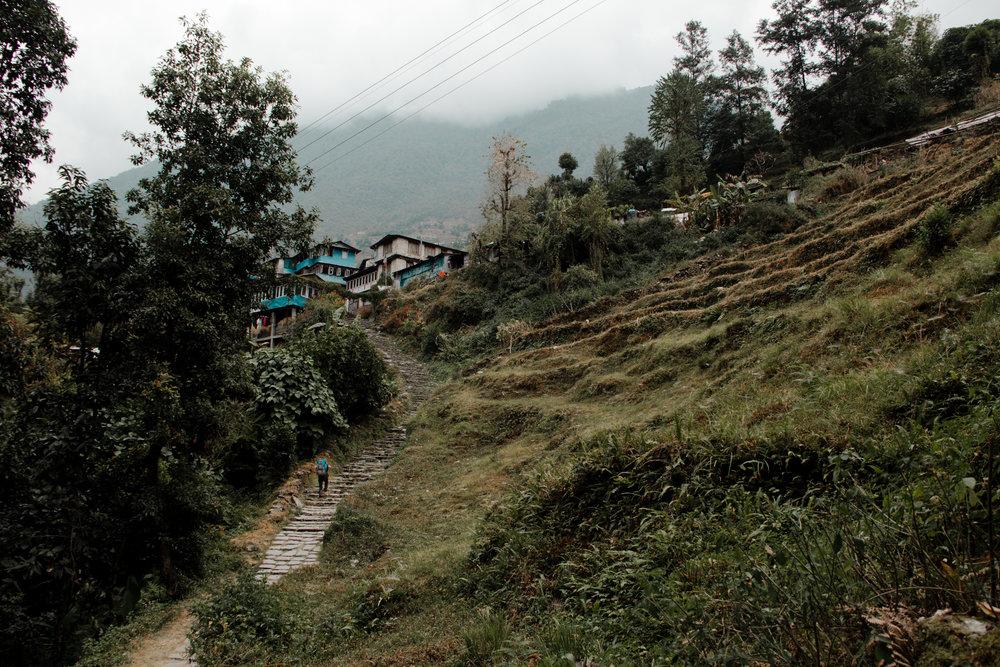 Poon Hill Trek, Nepal