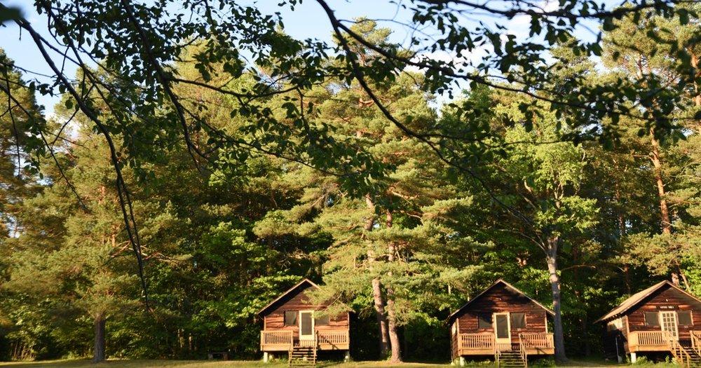 arnot-cabins-in-summer.jpg