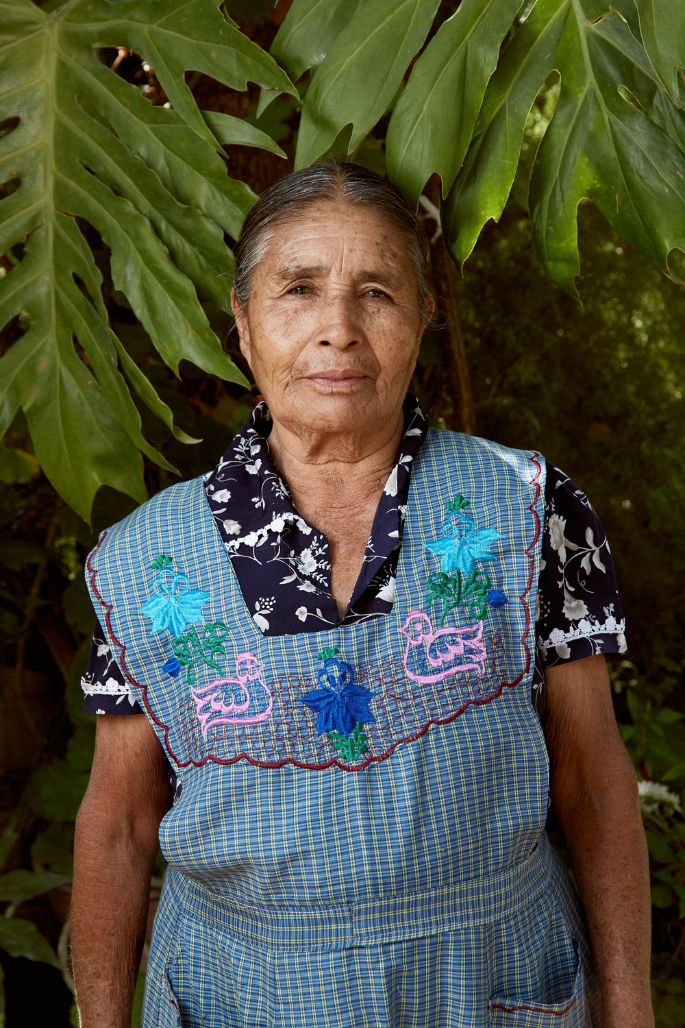 Oaxaca: Images of artisans and their craft.