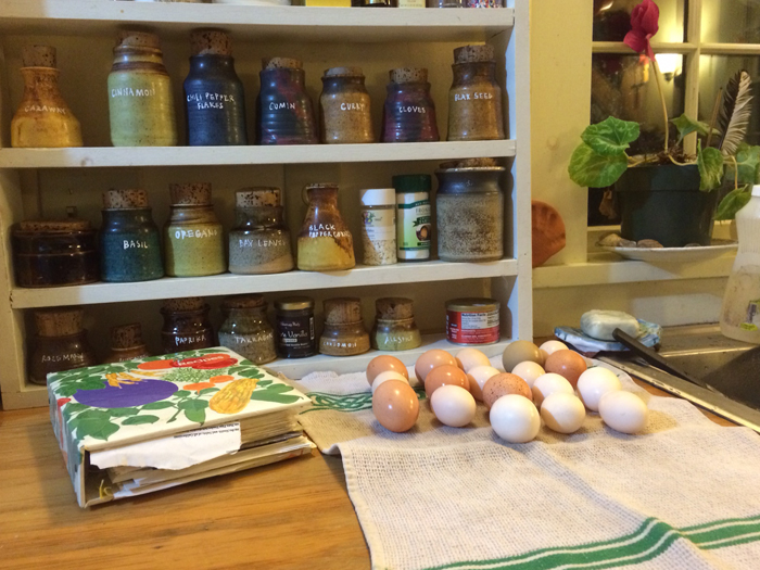 My kitchen Passed down spice jars and recipes along with, fresh eggs from the hen house
