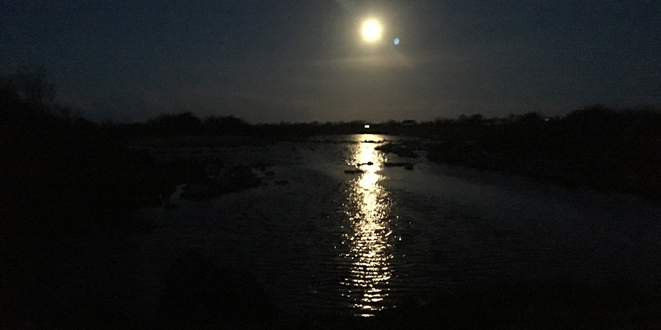 Full Moon - Doorus Co. Galway
