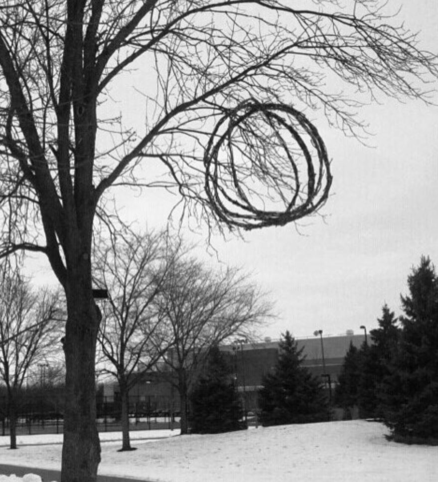 Sticks in a Tree