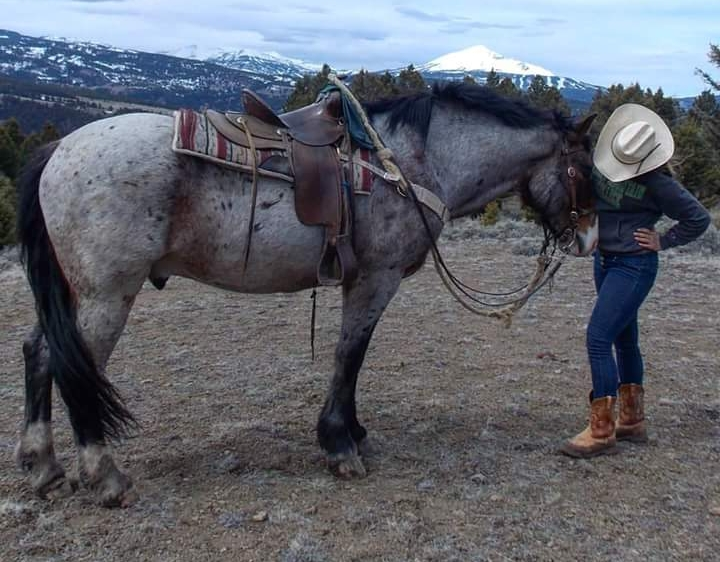 This is Clem and I atop Lemon's Knob. Clem is one of the first wrangle horses I started riding for the outfitting company. To this day, I am still trying to understand and appreciate this horse's extraordinarily complex personality.