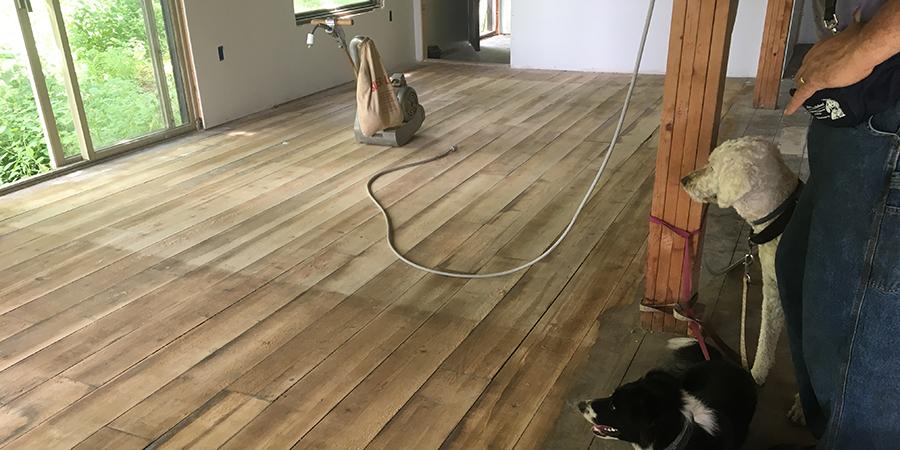 09.17.17 Floor Sanding with pups.jpg