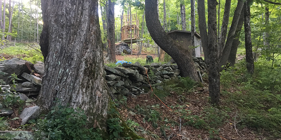 09.17.17 Treehouse in the works.jpg