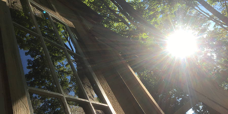 09.17.17 Sunshine on Treehouse.jpg