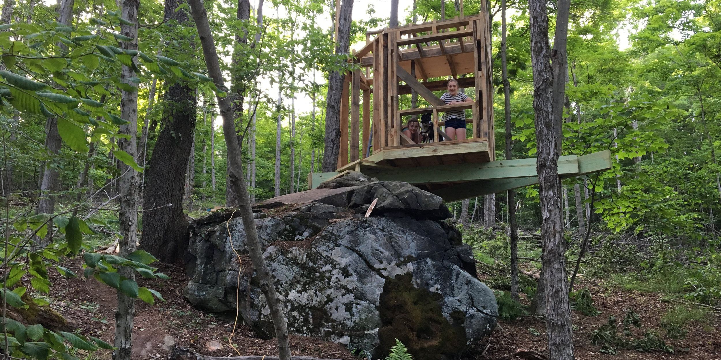 09.17.17 The Beginning of the Treehouse.jpg