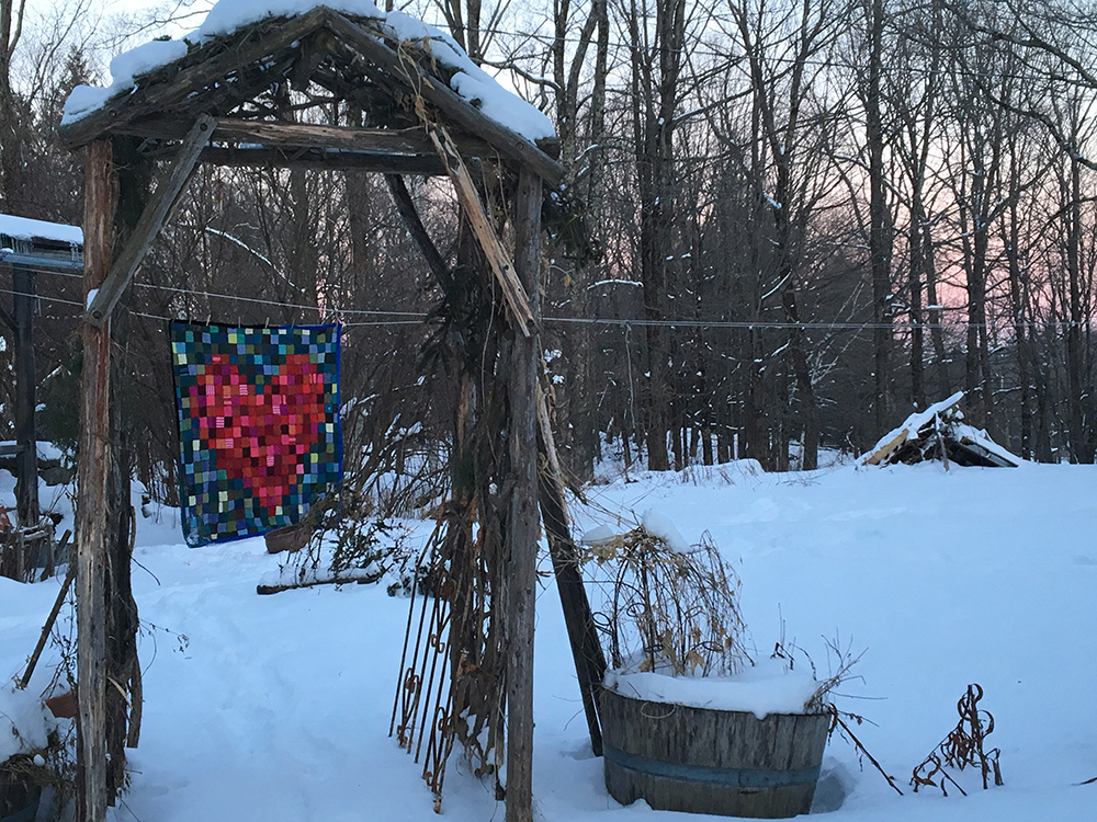 02.03.19 Blanket through trellis.jpg