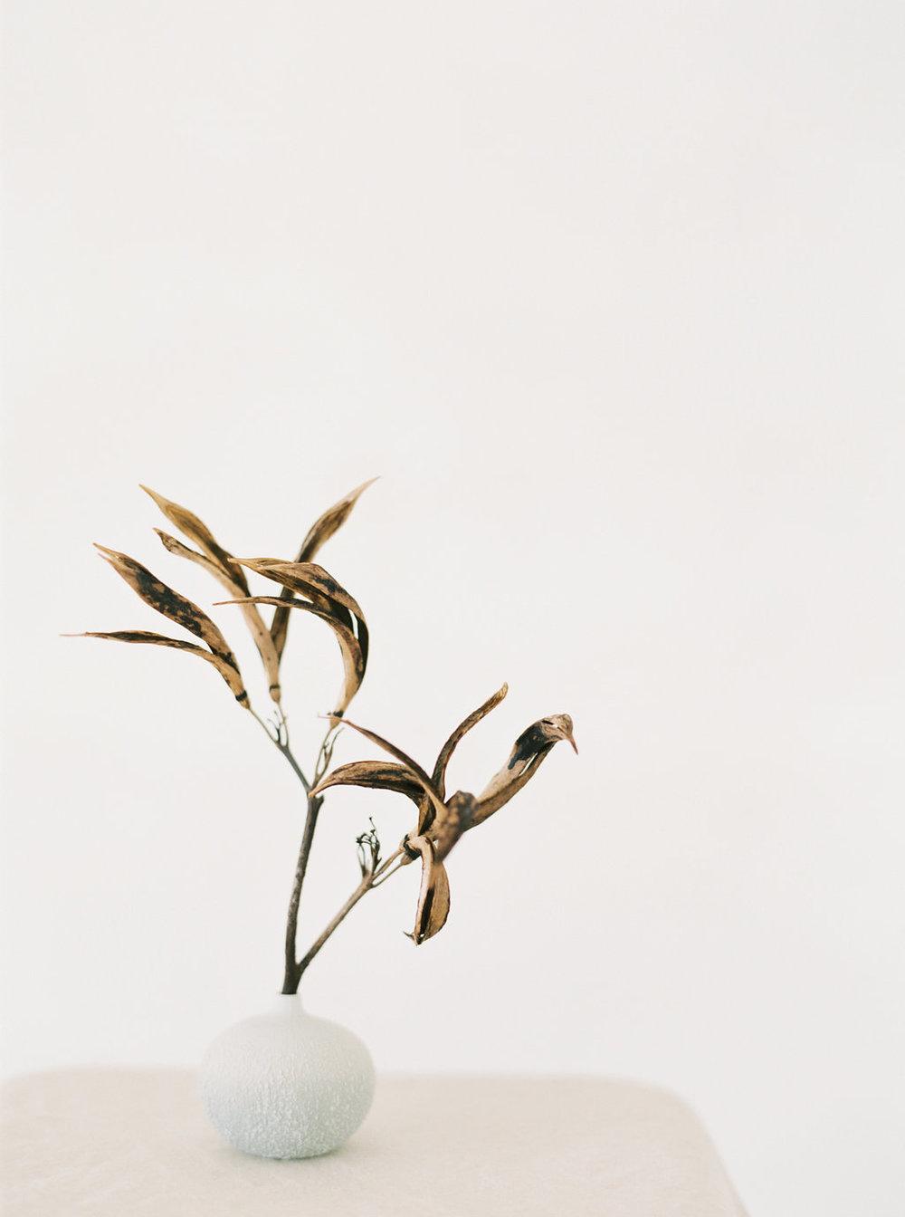 sandra-chau-stylist-fine-art-branding-shoot-mishku-studio220.jpg