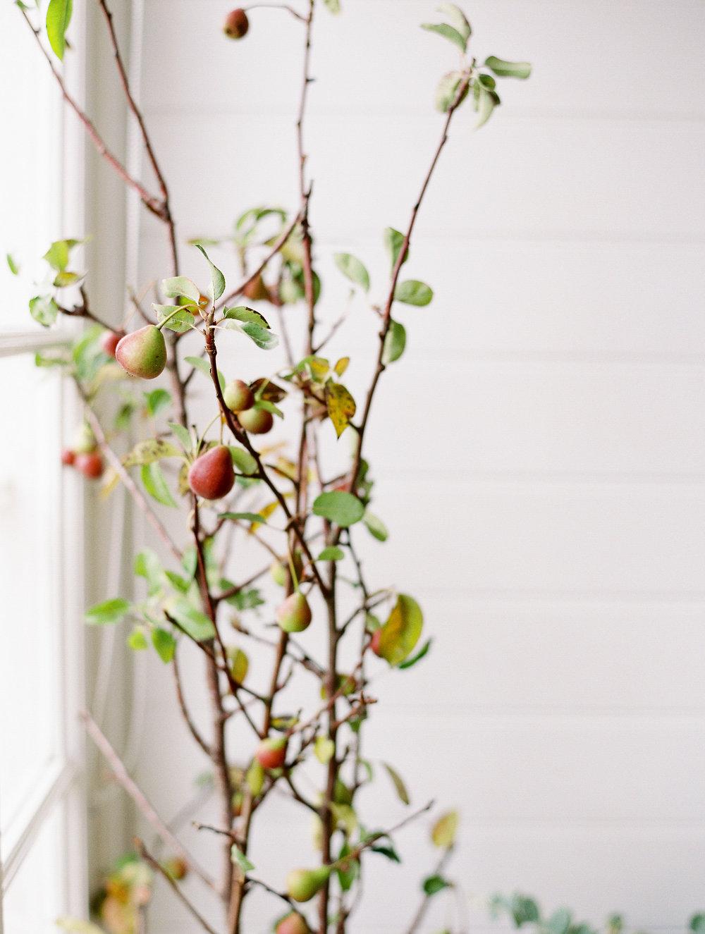 sandra-chau-stylist-floral-florist-branding-lifestyle-shoot-we-are-origami166.jpg