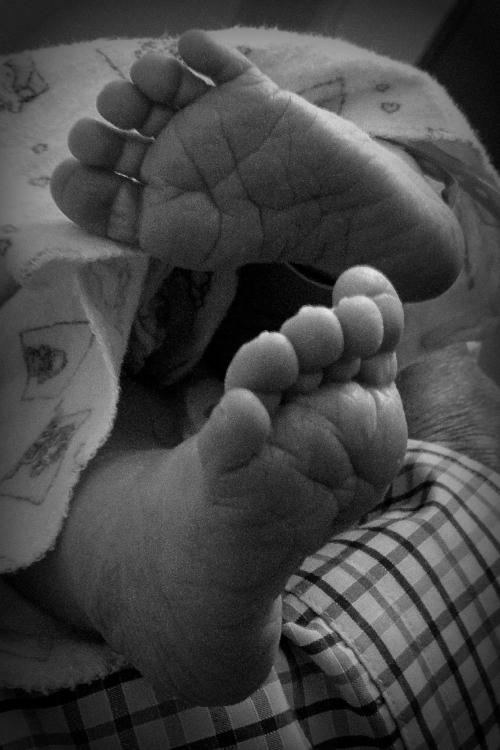 baby feet preemie babies