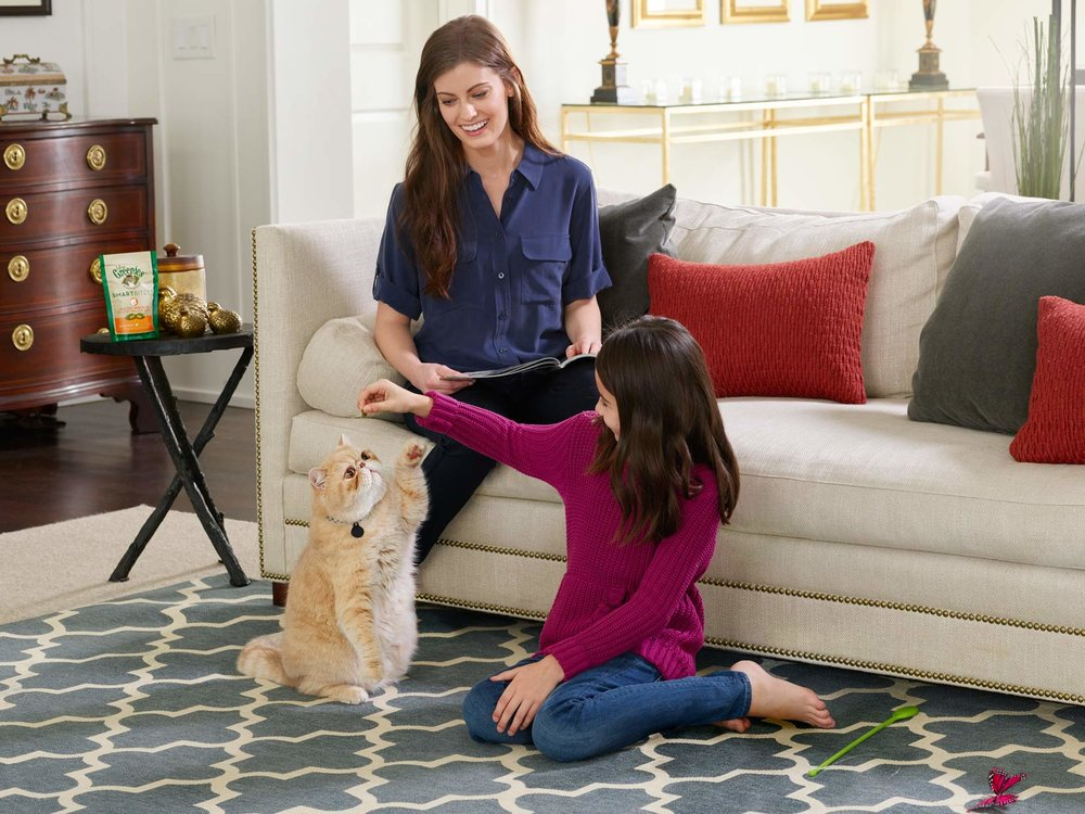 Mark DeLong - Commercial Photography - Mother and daughter give a treat to their light yellow cat in the living room.