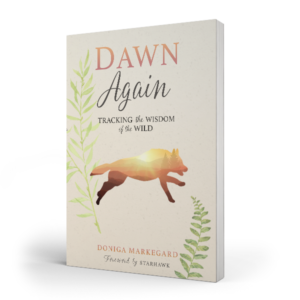 Dawn Again: Tracking the Wisdom of the Wild by Doniga Markegard