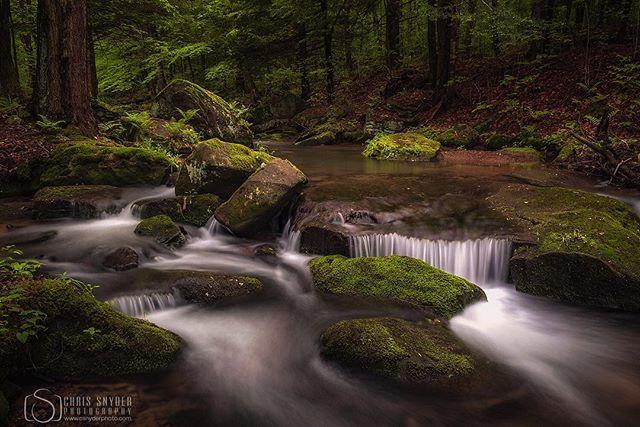 Hidden in Allegany #allegany #alleganystatepark #waterfall #waterfalls #longexposure #longexposurephotography #streams #photography #nikonphotography