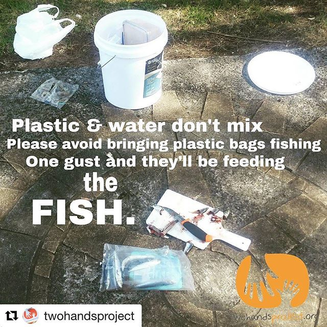 #Repost @twohandsproject with @repostapp ・・・ Unfortunately #Bait #Bags and shopping bags are common at our clean ups. This is why! Please don't bring plastic bags fishing, then they can't blow away or be littered. Unbag your bait, bin the bag and use a bait tin instead :) Also pick up any plastic you see, you don't want to be eating fish that have eaten plastic!  #PlasticPollutes #Fishing #Angling #Clean #Responsible #30MinuteCleanUp