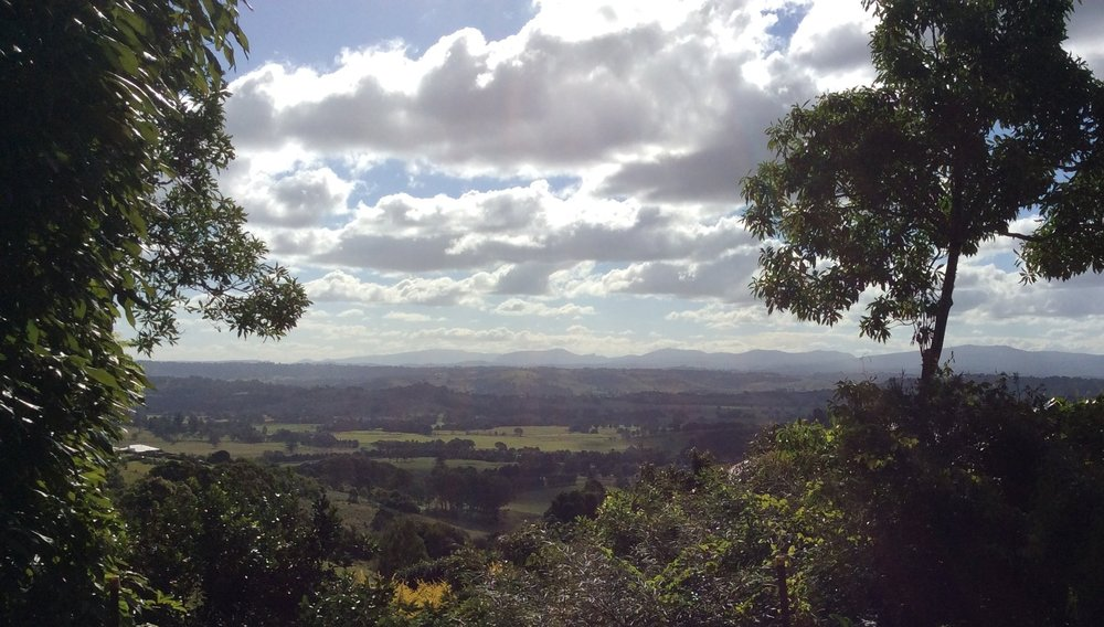 Looking north towards the Border Ranges.
