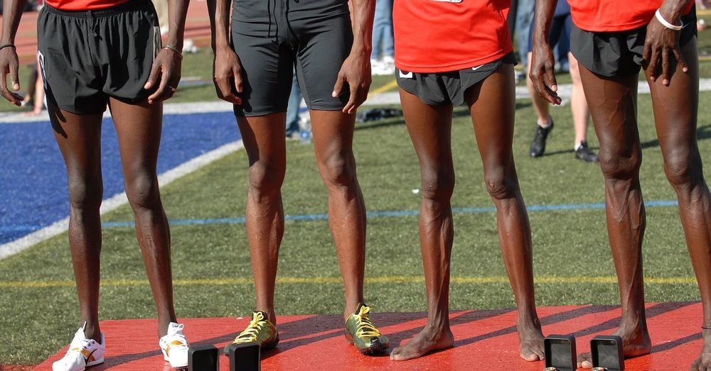 What race can I win? The 'marathon' legs of the  Kalenjin