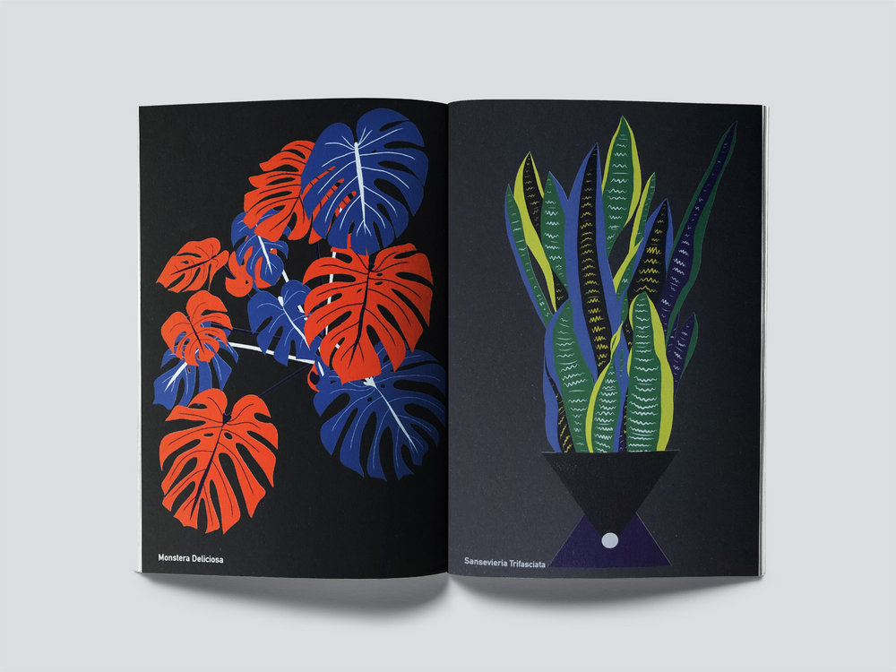 PLANT THERAPY   -  Our book is out now! Art Direction, Design & Illustration