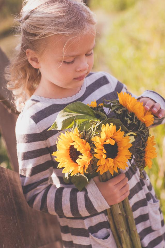 sunflowers_down.jpg