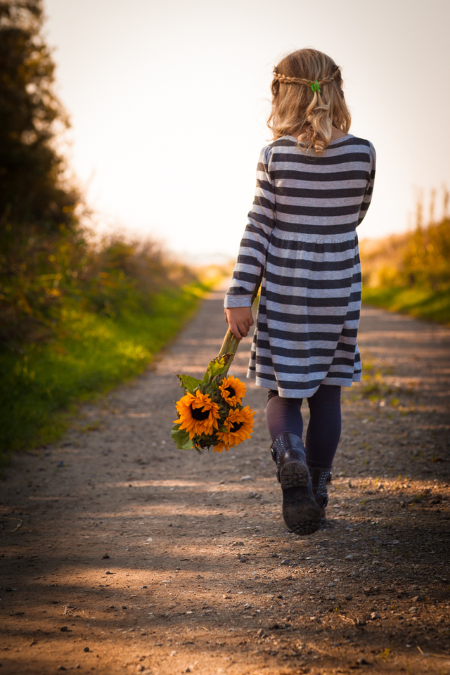 sunflowers_walk.jpg