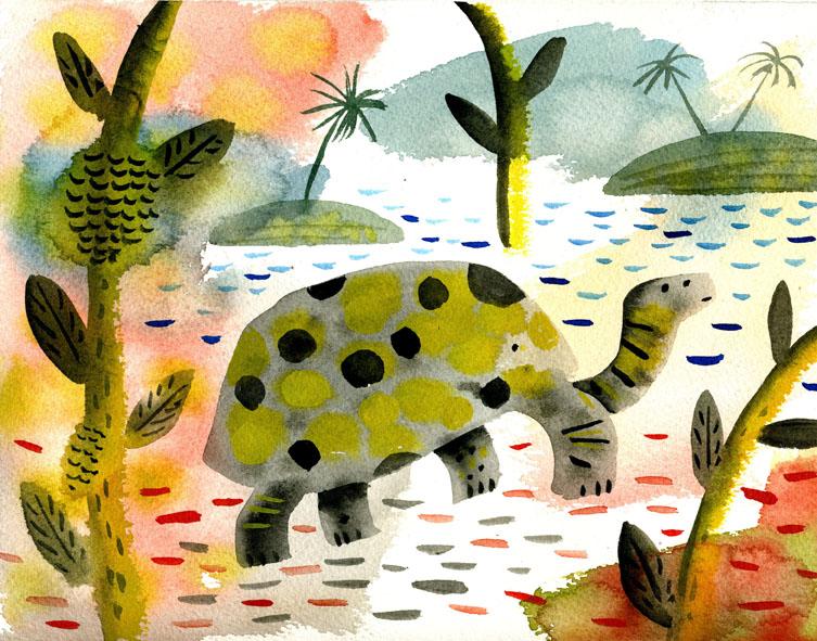 Tortoise.Lear.jpg