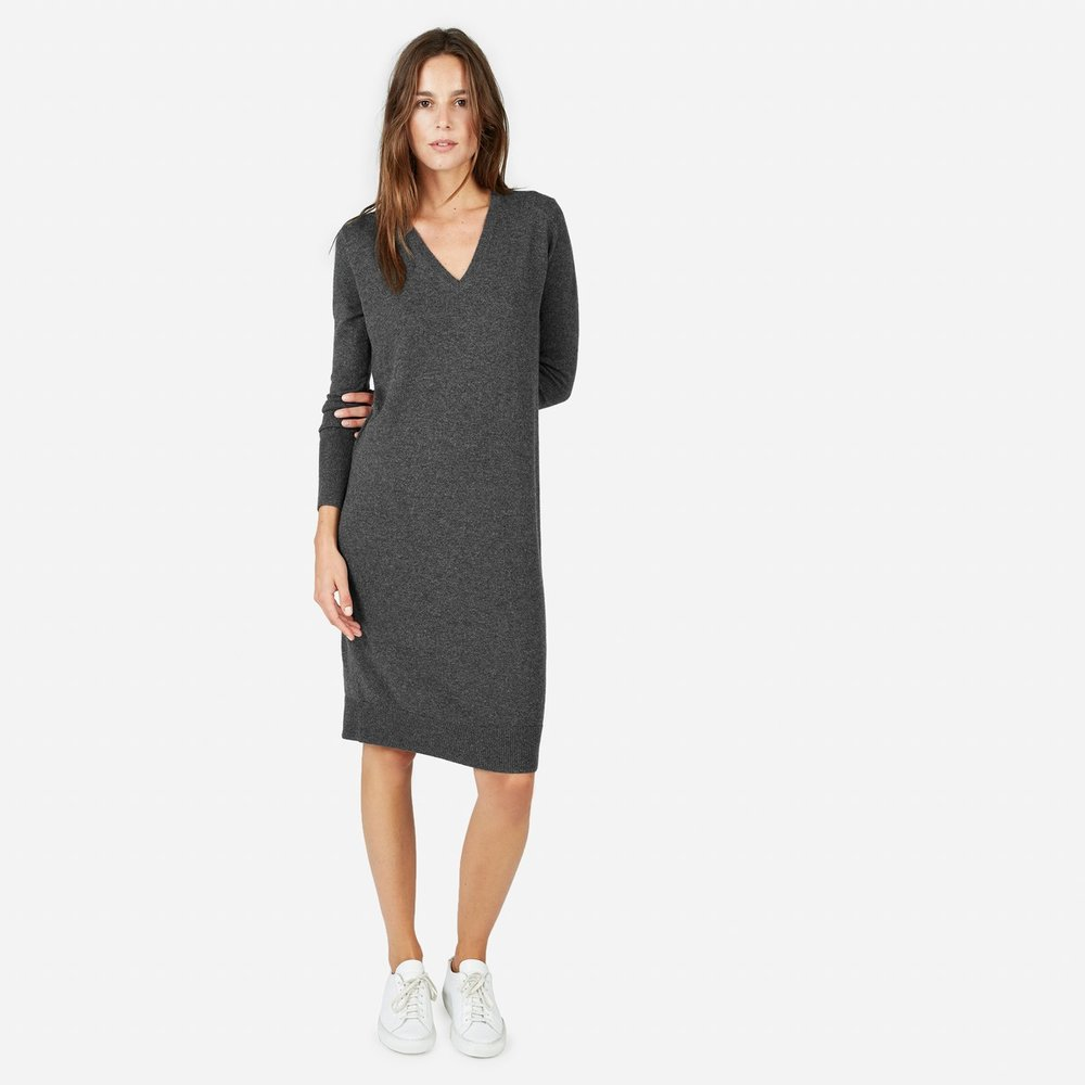 Cashmere Dress by Everlane