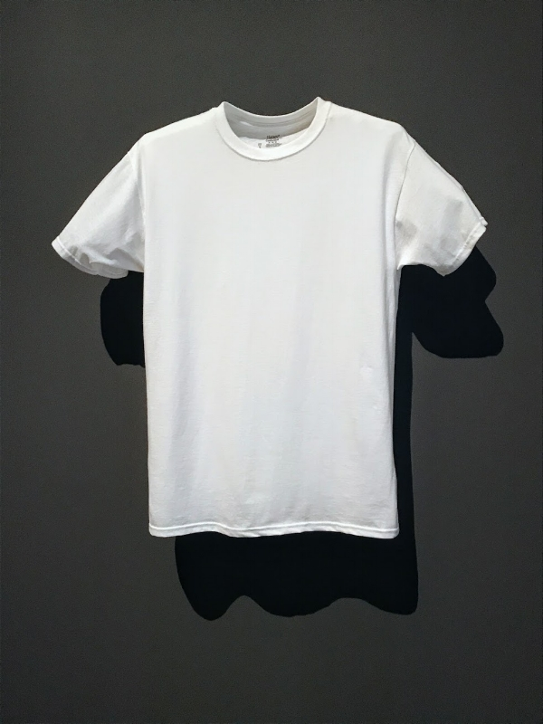 Hanes T-Shirt at the MoMa Exhibit, 'Items: Is Fashion Modern?'