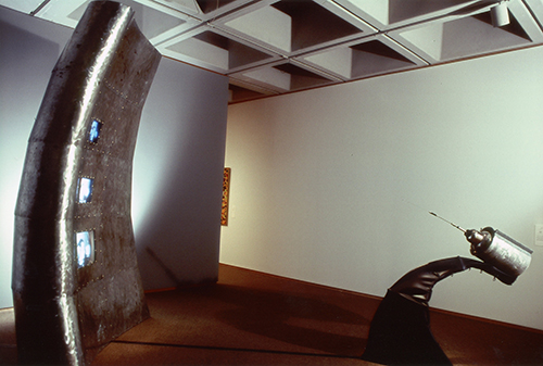 North Carolina Art Museum installation.jpg