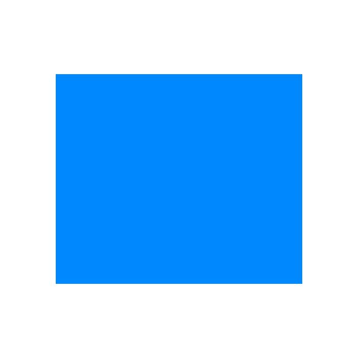 noun_72585_cc.png
