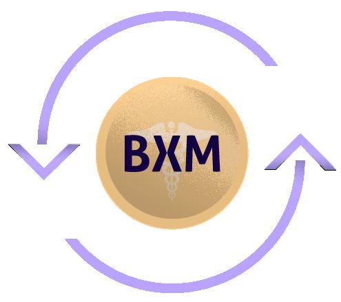 BXM2.png