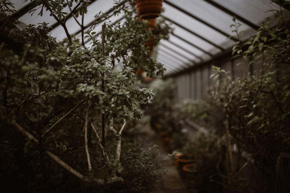 Magda-Botanischer-Garten-Erlangen-1.jpg