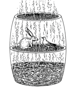 Figure 2.  Animals incubating in miasma,  adapted from [2] .
