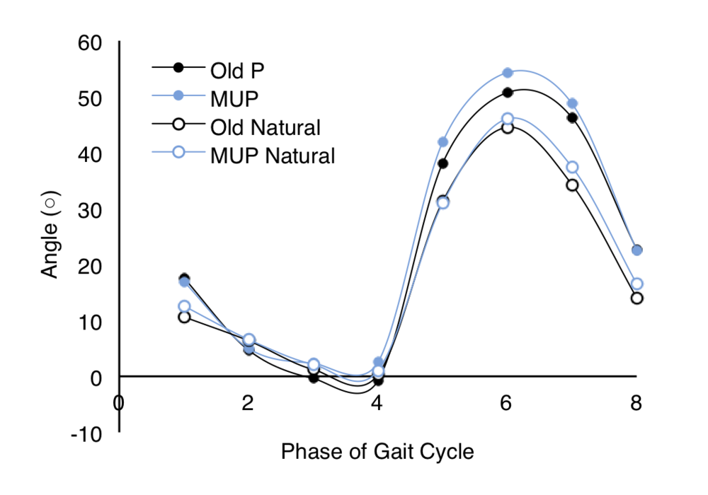 Figure 4. Average knee angles during one gait cycle.  Depicts four different parameters (Old P, MUP, Old Natural, MUP Natural) over each phase of one gait cycle (1–8). 1: initial contact; 2: loading response, 3: mid-stance, 4: terminal-stance, 5: pre-swing, 6: initial swing, 7: mid-swing, 8: terminal swing.