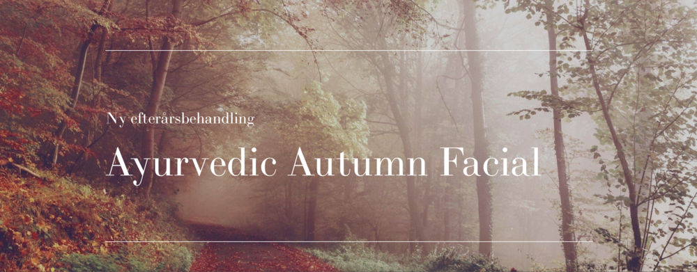 Ayurvedic Autumn Facial