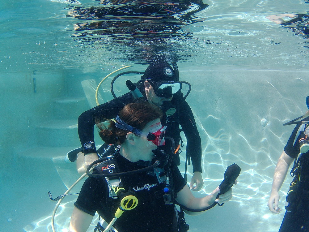 Professional Instructor Program - Go from being a Divemaster to an Open Water Instructor as well as start your journey to become a Master Scuba Diver Trainer