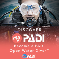 Private Open Water - Test, Pool & Open Water Dive 1