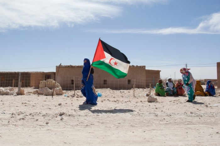 A Saharawi waving the SADR flag. Photo: Mali Galaaen Røsseth