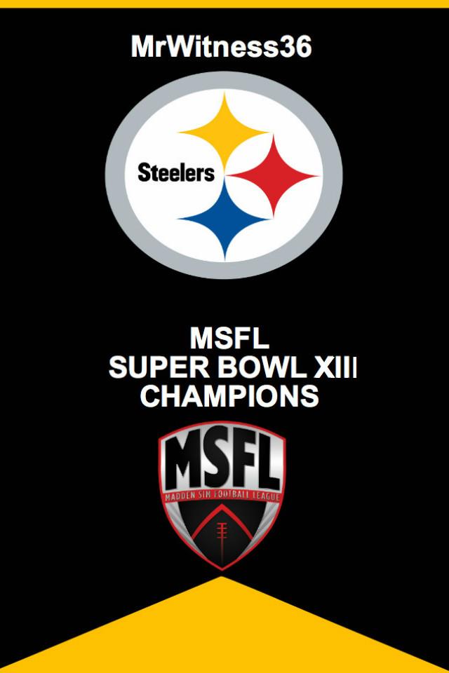 SB 13 Steelers.jpg