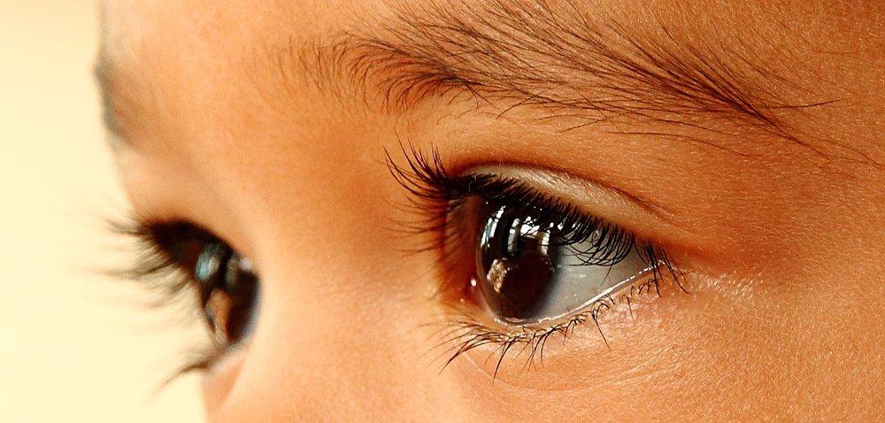 eye by Ed courtesy of Flickr.jpg